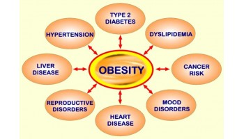Is Obesity Really Genetic: To a Certain Extent